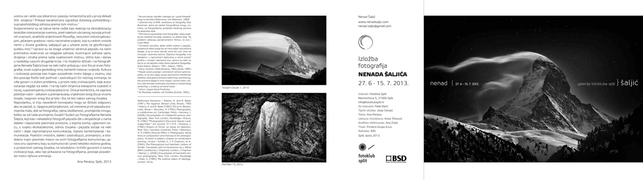 Catalog Nenad Saljic Exhibition
